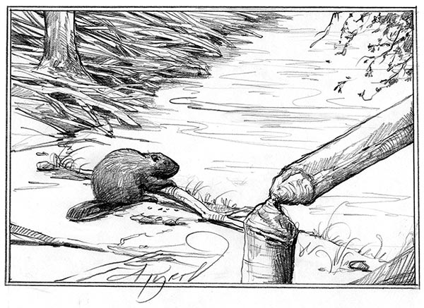Arms Race In The Woods How Beavers Recycle Tree Defenses