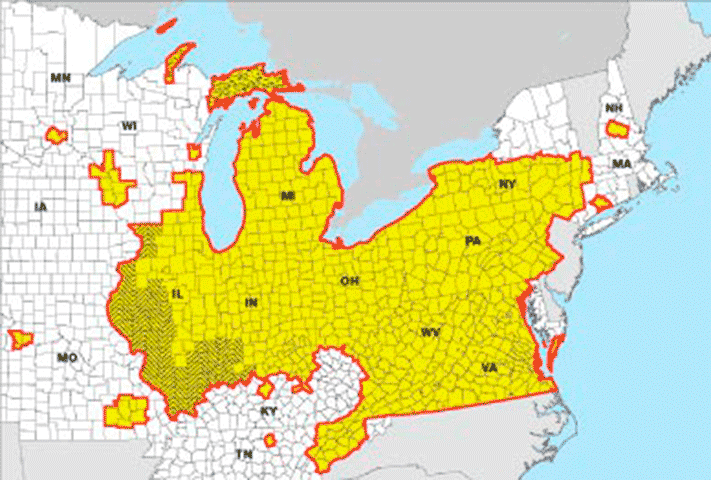 To Quarantine Or Not To Quarantine Autumn Knots And Bolts - Emerald ash borer map