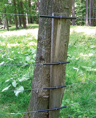 Tricks Of The Trade Living Fenceposts Summer 2015