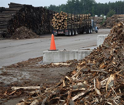 Lumber, Chips, and Sawdust: For Sawmills, There's No Such Thing as