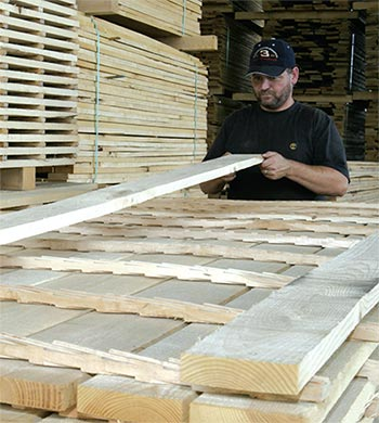 Stacking Kiln Dried White Ash Lumber Using Custom Drying Stickers