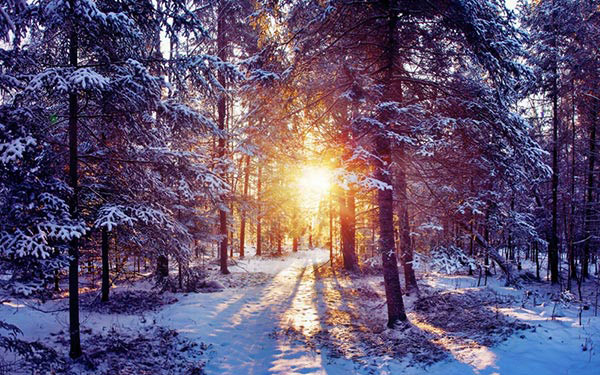 Sunsets in winter editor s blog for Schneebilder kostenlos