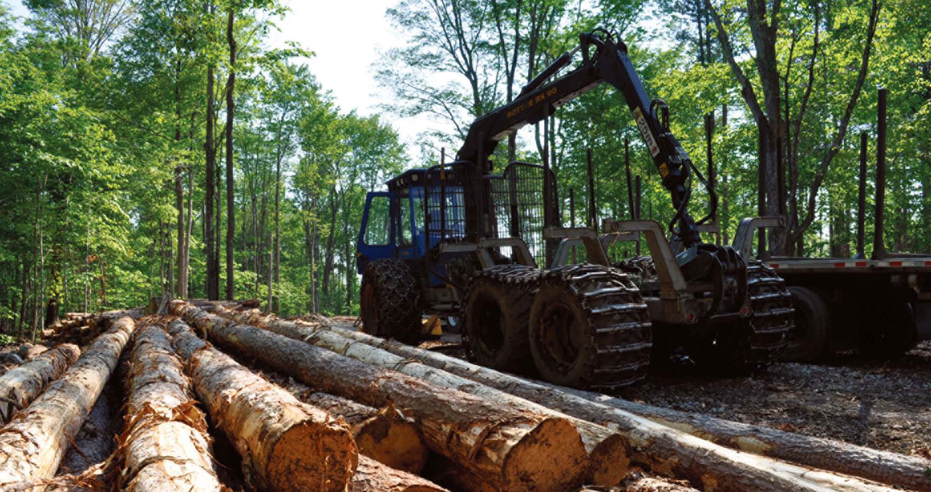 Three Logging Systems: Matching Equipment to the Job | Autumn 2011