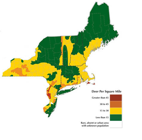 maine deer population map Too Many Whitetails Winter 2010 Articles Features maine deer population map