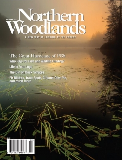 Autumn 2013 Cover