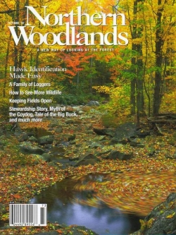 Autumn 2007 Cover