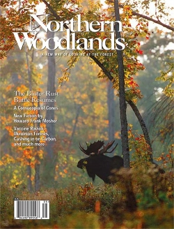 Autumn 2015 Cover