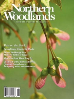 Spring 2010 Cover
