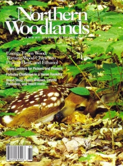 Spring 2006 Cover