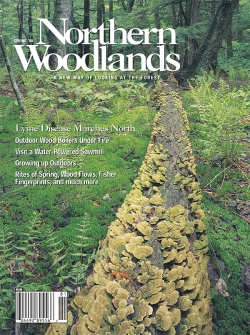 Spring 2008 Cover