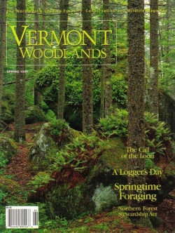Spring 1999 Cover