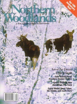Winter 2004 Cover