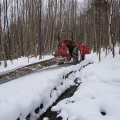 "Waterford, VT. ""Corduroy over seep hole."" A ""corduroy road"" is a pathway of logs used to help heavy logging equipment get across difficult (typically, wet) ground. Credit: Gordon Gould"