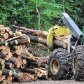 The softwood will be trucked to VT Wood Pellet in Clarendon, VT and turned into wood pellets. Photo: Northern Woodlands