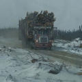 Logging truck north of Mistissini. Photo: Naomi Heindel