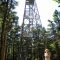 Some fire towers, like this one on Glastenbury Mountain in Vermont, are open to hikers. Photo: Northern Woodlands