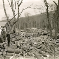 During spring log drives in the early 1900s, the mass of logs filling the Androscoggin could extend five miles upriver. Photo: Courtesy of the Brown Company Collection, Plymouth State University