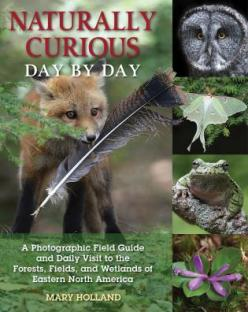 Naturally Curious: Day by Day Image
