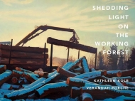 Shedding Light on the Working Forest