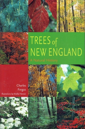 Trees of New England