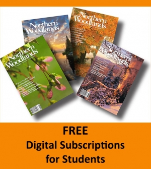 Free Digital Magazine for Students